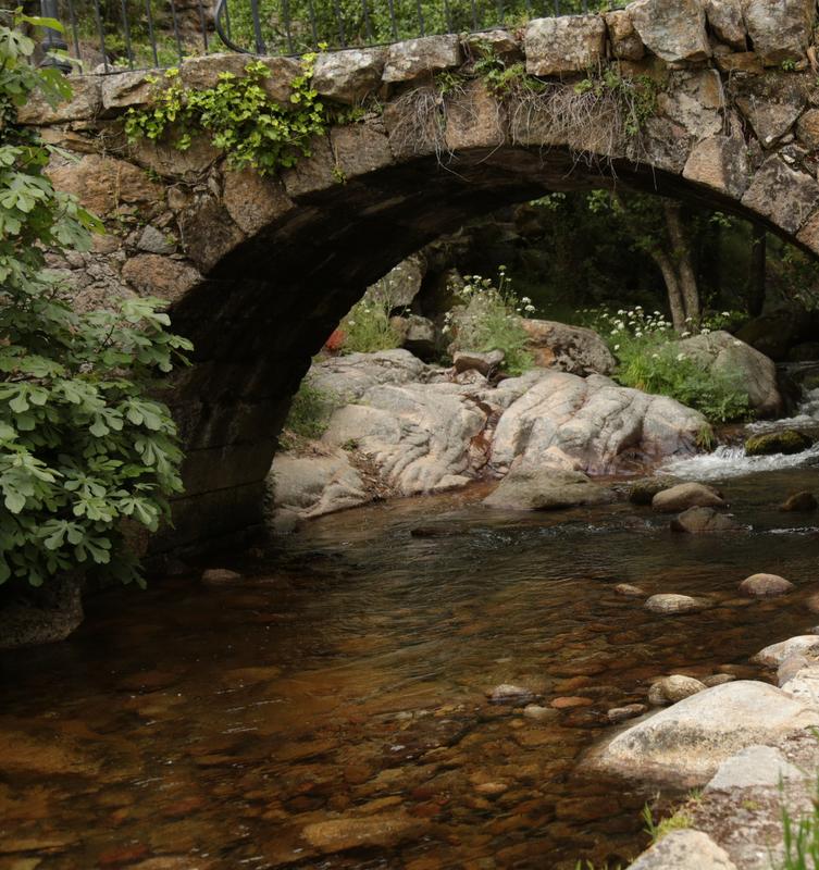 El ayuntamiento de Casas del Monte se pone serio frente a la sequía
