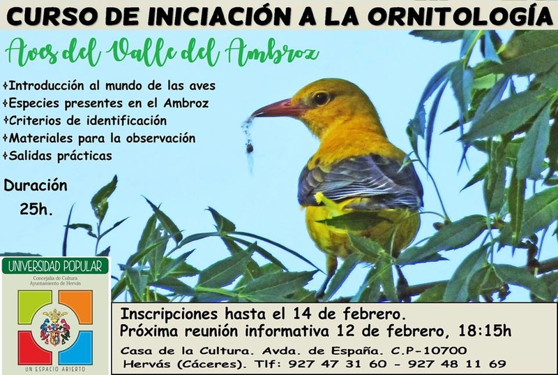 La Universidad Popular de Hervás organiza un curso de iniciación a la ornitología