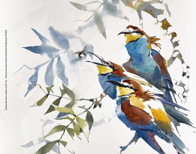 La feria de turismo ornitológico FIO llega a Plasencia este fin de semana