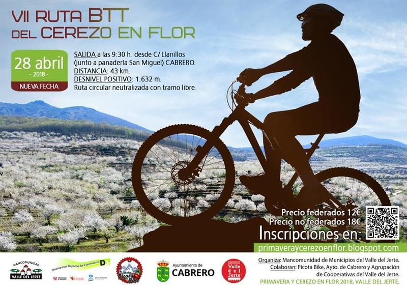 La ruta BTT del Cerezo en Flor se celebrará el 28 de abril