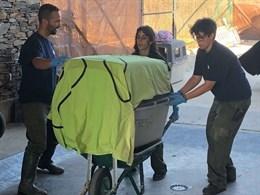 Los nueve linces trasladados a Granadilla por un incendio en Portugal han llegado