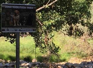El Ayuntamiento de Navaconcejo habilita parte de su piscina natural para el baño con mascotas