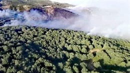 Medios aéreos trabajan en la extinción de un incendio forestal en Cabezuela del Valle