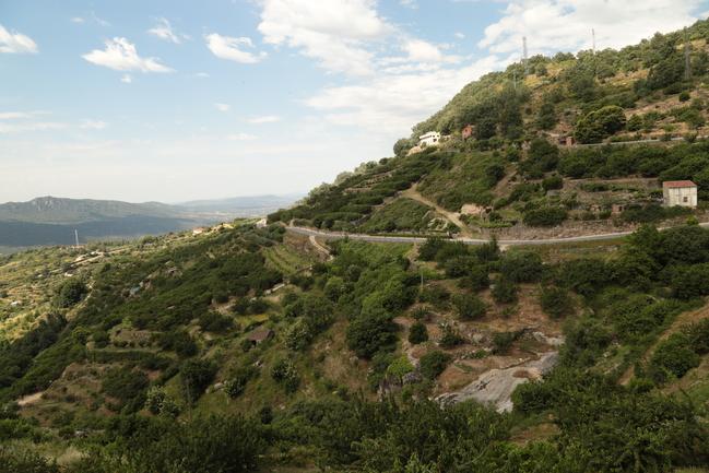 La Junta de Extremadura invierte 471.000 euros en mejoras de caminos en el Valle del Jerte