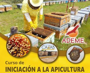 El Centro de Actividades sobre las Abejas y la Biodiversidad de Higuera de Albalat impartirá un curso de iniciación a la apicultura