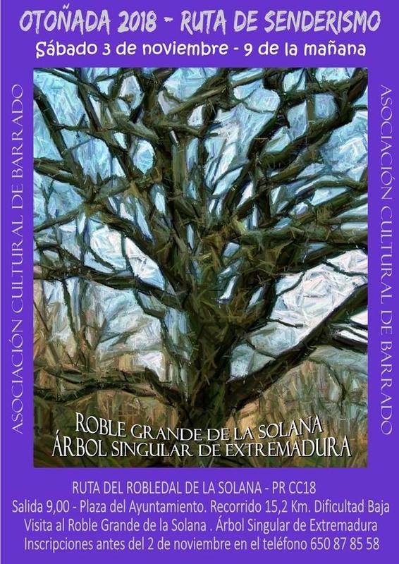 Barrado celebra una ruta senderista para visitar el gran roble de la solana, árbol singular de Extremadura