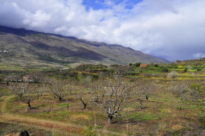 Tornavacas acogerá unas jornadas sobre la conservación del paisaje cultivado del Valle del Jerte
