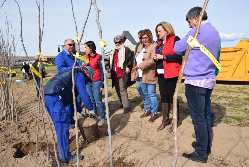 Campaña de plantas ornamentales del Vivero provincial en la Finca La Haza de la Concepción
