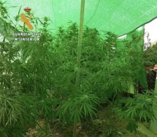 Desmantelados dos puntos de venta de drogas en Cáceres y Montehermoso