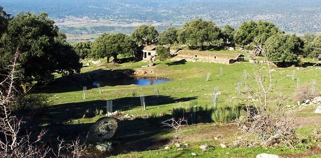 El Ayuntamiento de Plasencia prohíbe el acceso al monte Valcorchero para la celebración de los tradicionales ''Calbotes''