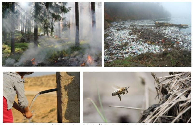 Más de 400 ecólogos se reunirán en el Palacio de Congresos de Plasencia con motivo del XV Congreso Nacional de la AEET